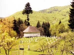 Schitul vechi şi cimitirul