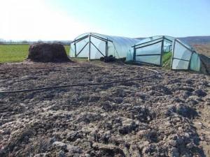 Sistem de irigaţii pentru legume