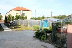 Liceul Agricol din Seini, serele şi o parte din solarii