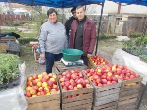 Mariana şi Daniel Tinc vînd mere
