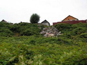 Groapa de gunoi dă pe din afară...