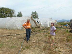 Virgil şi Garofiţa Grebleş în câmp